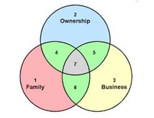 Le opportunità e le sfide della proprietà familiare: la continuità come vantaggio di sistema